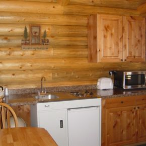 kitchen inside cabin.